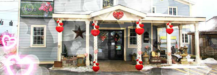 Olney's Flowers- your florist in Rome - Christmas flowers are here!