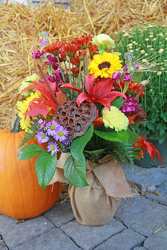 Fall Celebrations  from Olney's Flowers of Rome in Rome, NY