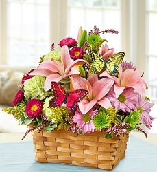 Garden Inspiration Basket from Olney's Flowers of Rome in Rome, NY