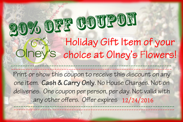 Christmas Coupon  from Olney's Flowers of Rome in Rome, NY