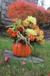 Pumpkin Wonder from Olney's Flowers of Rome in Rome, NY