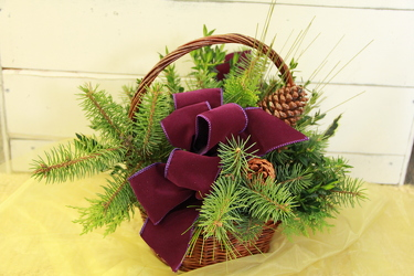 Sugar Plum Basket (No flowers) from Olney's Flowers of Rome in Rome, NY