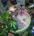 Fairy Garden with House from Olney's Flowers of Rome in Rome, NY