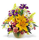 FTD Natural Wonders Bouquet from Olney's Flowers of Rome in Rome, NY