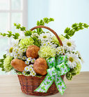 St. Patrick's Day Flower Basket from Olney's Flowers of Rome in Rome, NY