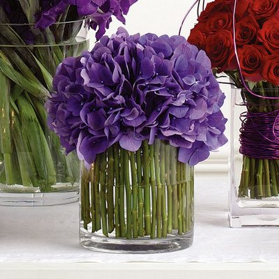 Olney S Flowers Of Rome Ny Rome New York Flower Shop