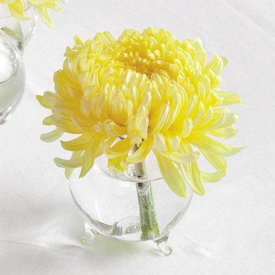 Olneys Flowers Of Rome Ny Rome New York Flower Shop