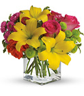 Teleflora's Sunsplash- Bright Cube  from Olney's Flowers of Rome in Rome, NY