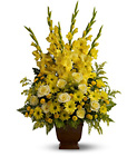 Teleflora's Sunny Memories from Olney's Flowers of Rome in Rome, NY