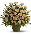 Teleflora's Rose Remembrance from Olney's Flowers of Rome in Rome, NY