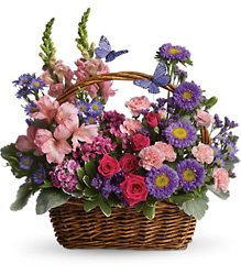 Lasting Love Butterfly Basket from Olney's Flowers of Rome in Rome, NY
