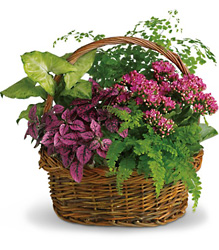 Secret Garden Basket from Olney's Flowers of Rome in Rome, NY