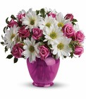 Teleflora's Pink Daisy Delight - Spray Roses & Daisies from Olney's Flowers of Rome in Rome, NY
