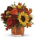 Autumn Sunshine Cube from Olney's Flowers of Rome in Rome, NY