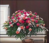 Delicate Pink Casket Spray from Olney's Flowers of Rome in Rome, NY