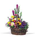 Basket of Glory from Olney's Flowers of Rome in Rome, NY