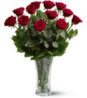 1 Dozen Roses from Olney's Flowers of Rome in Rome, NY