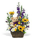 New Baby Basket & Bear from Olney's Flowers of Rome in Rome, NY