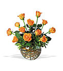 A Dozen Orange Roses from Olney's Flowers of Rome in Rome, NY